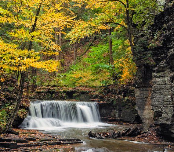 The 5 Best Parks To See Fall Color In The Finger Lakes Region